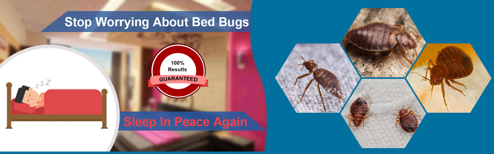 bed bugs control in chennai